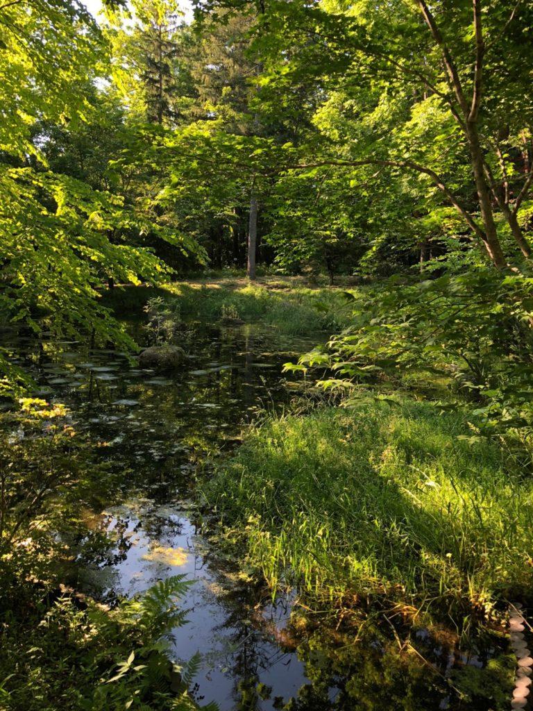 池田町からの風景