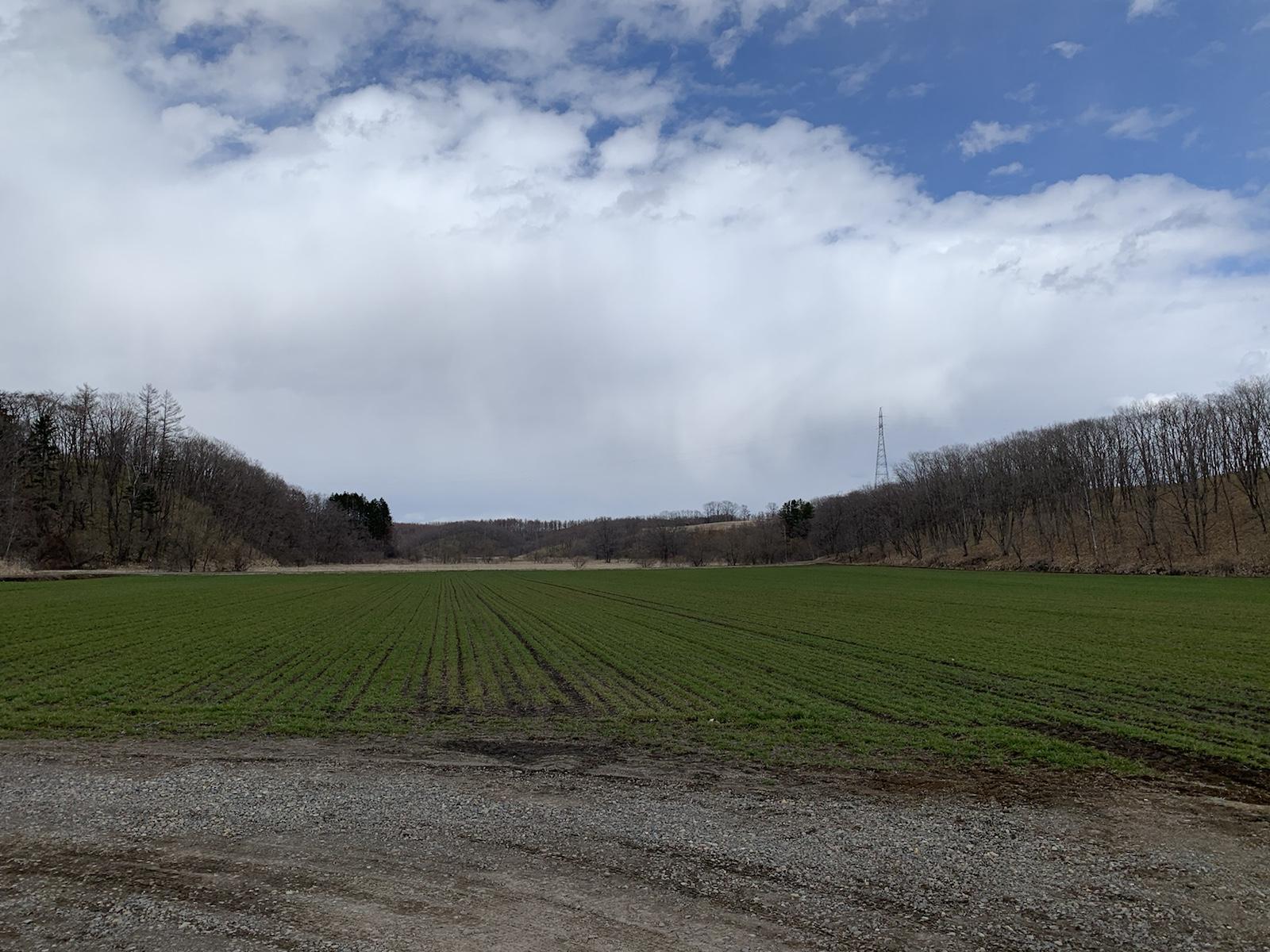 農場 農家 北海道