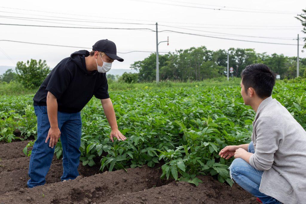 北海道 農業